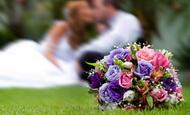Весільний каталог — каталог весільних послуг Чернівців |
