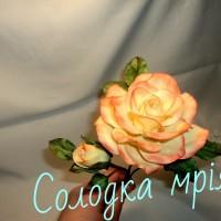 solodka_mriya10