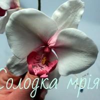 solodka_mriya8