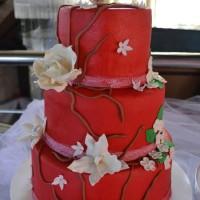 tortiki10