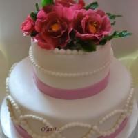 tortiki11