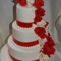 tortiki17