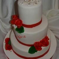 tortiki19