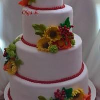 tortiki5