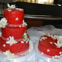tortiki9