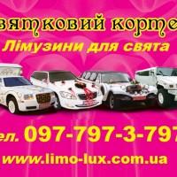 limuzin3